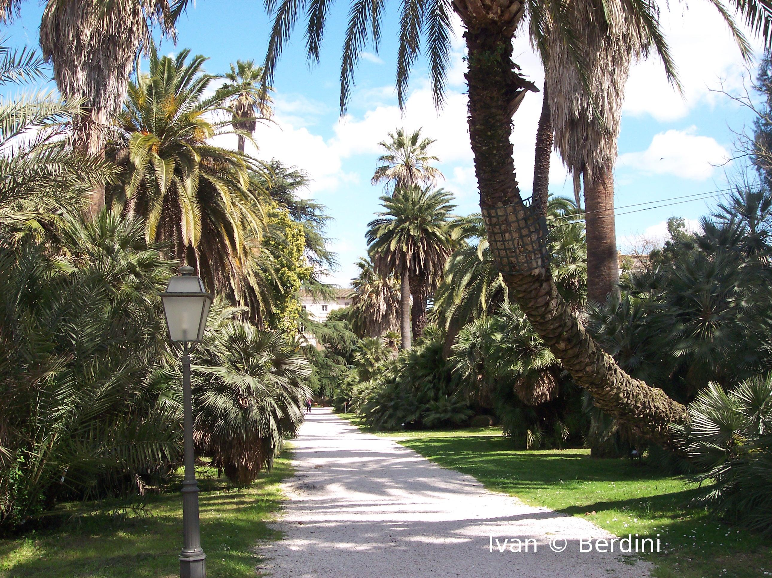 Musei – L'Orto Botanico di Roma